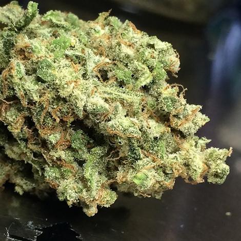 Trainwreck strain cannabis