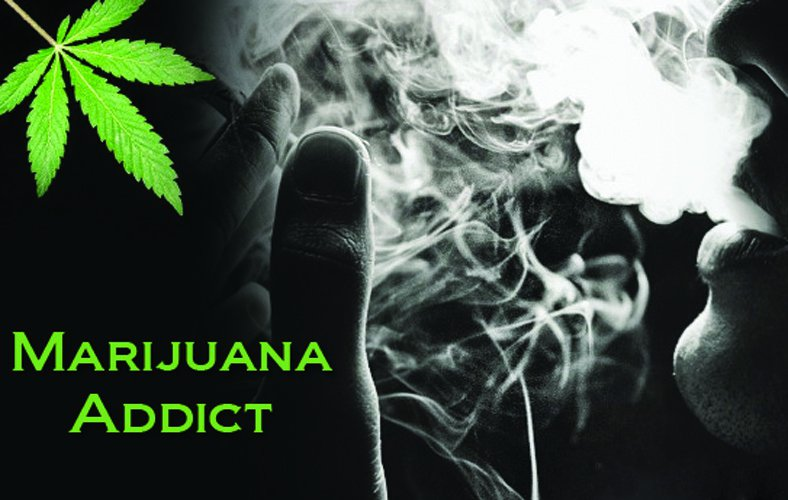 Marijuana Myths Weed Addiction