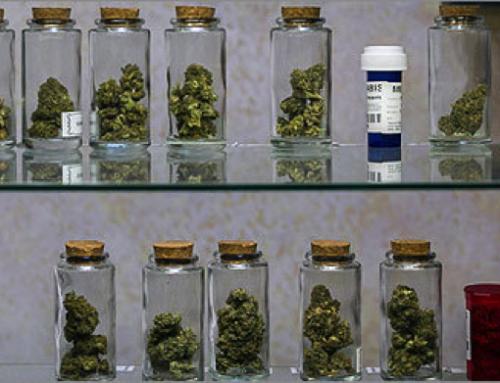 Medical Marijuana – How Does it Work as a Medicine?