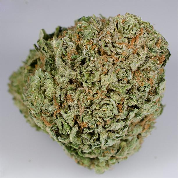 Alaskan Ice Indica Strain Marijuana