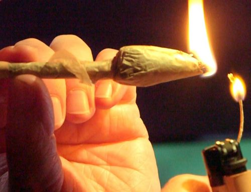 Video-How To Roll A Dutch Tulip