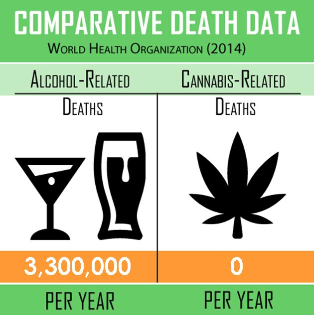 Cannabis Vs Alcohol