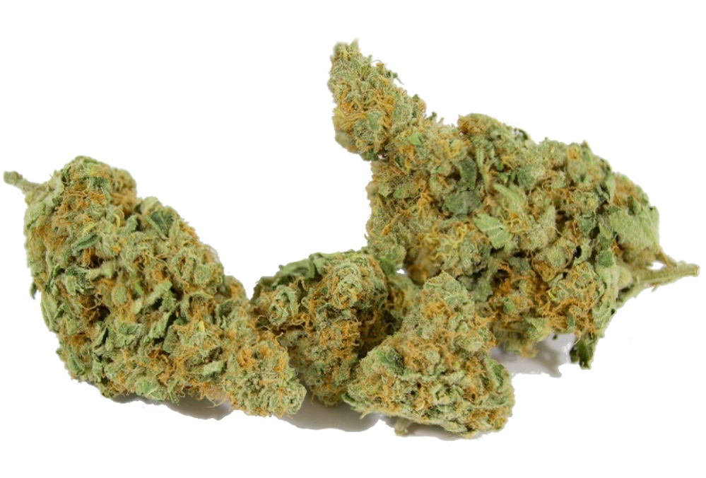 THC Snow marijuana strain review