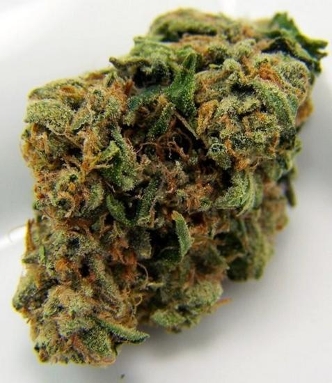 Afghan Kush Cannabis bud