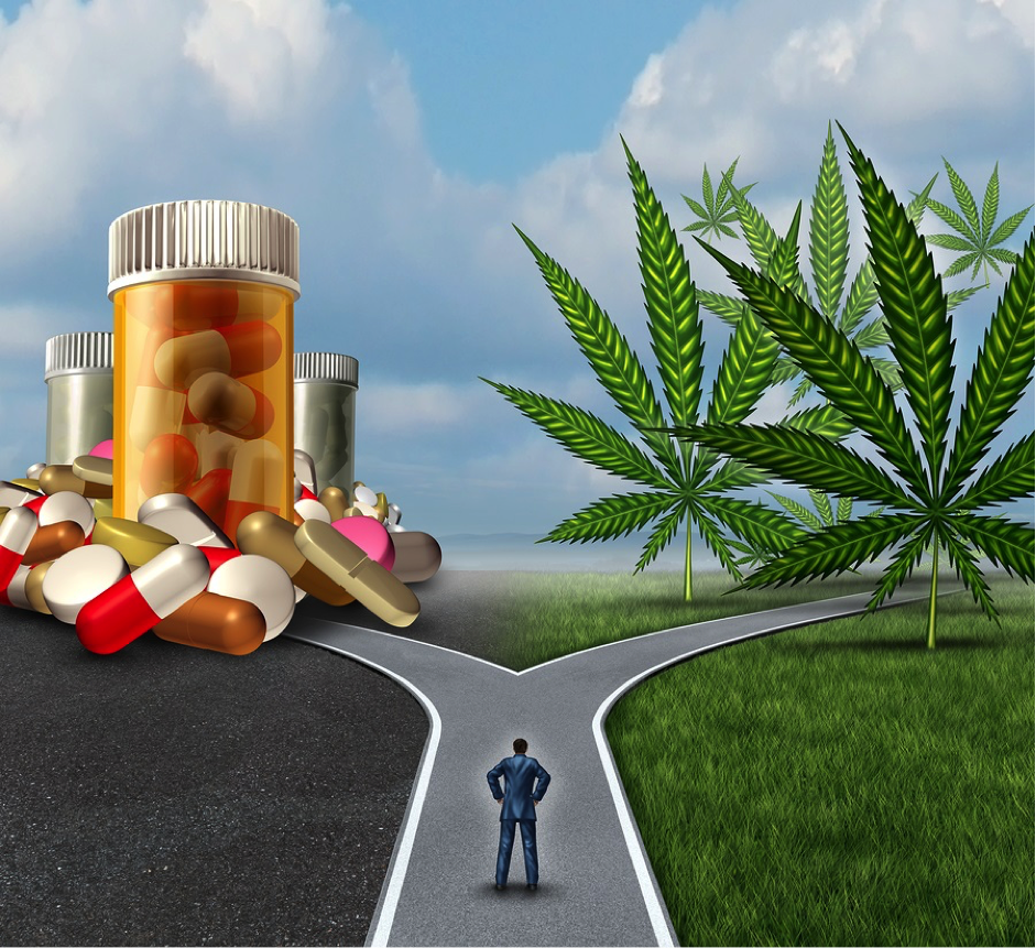 More pills or cannabis? You choose.