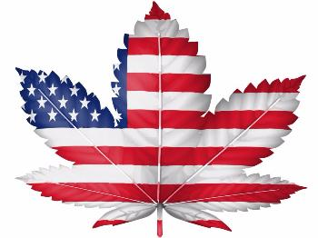 USA leads the way on Cannabis policy reform