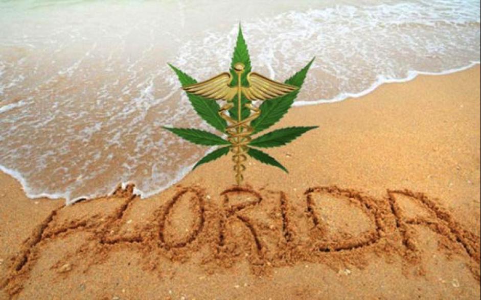 Florida cannabis MMJ legalization