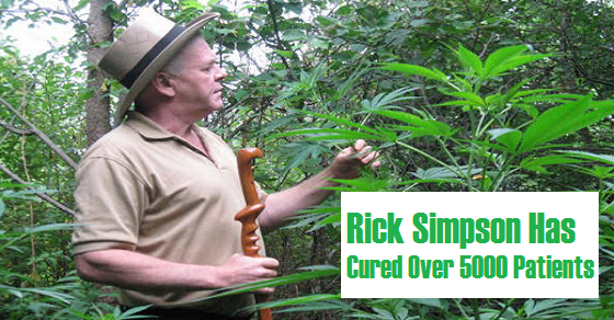 Rick Simposon Hash and Cannabis Oil Cures