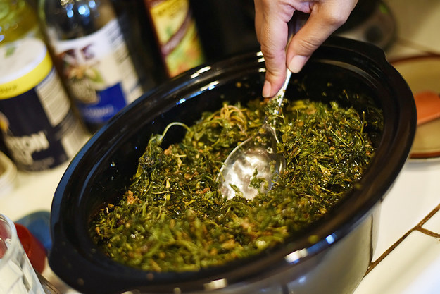 Infusing cannabis lotion in a crockpot