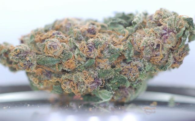 blueberry-cannabis-bud-strain-review