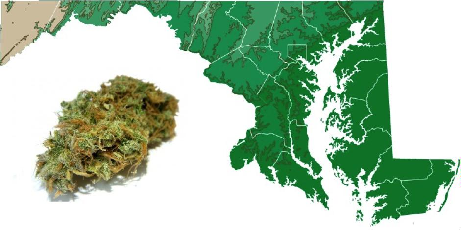 Maryland Cannabis