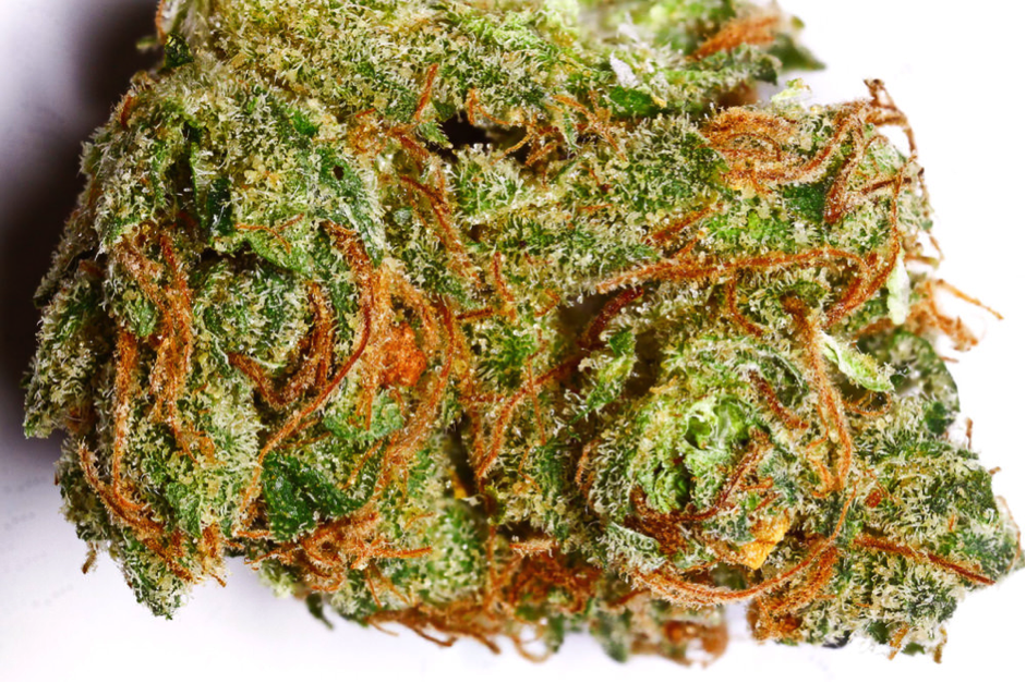 Cannabis anatomy the pistil