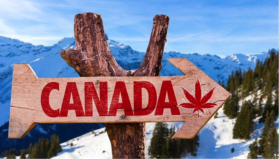 Legalize 2017 – Which Countries Are Next?
