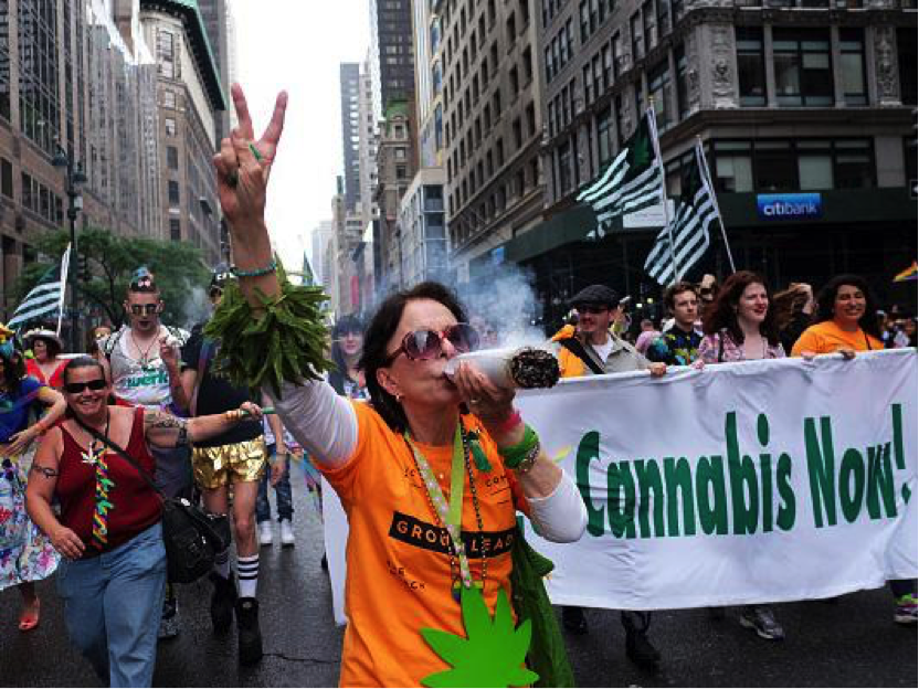 Legalize Cannabis in Brazil