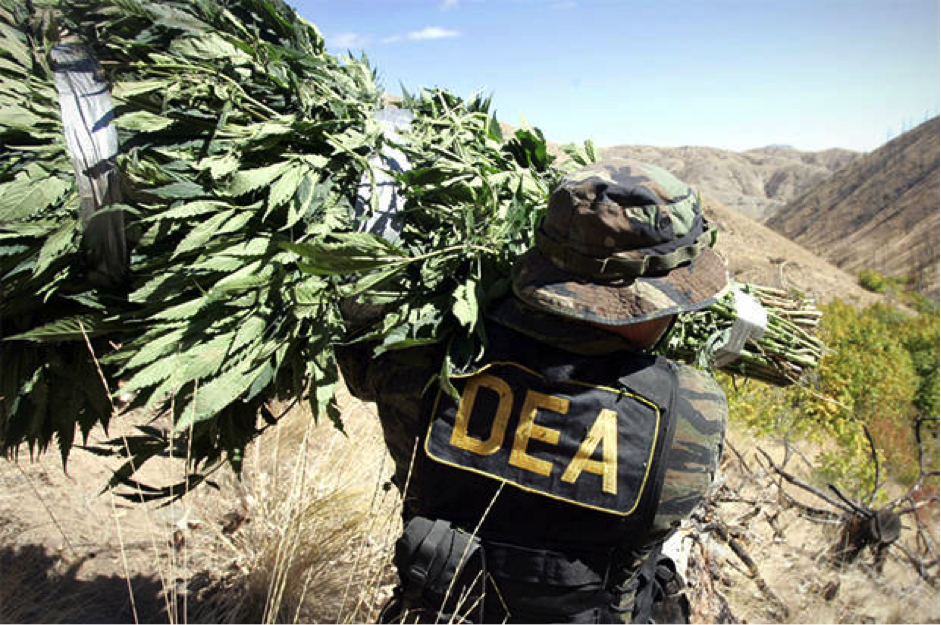 DEA Website Discreetly Discards Dangerous Cannabis Lies