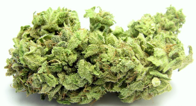Hindu Kush cannabis strain review