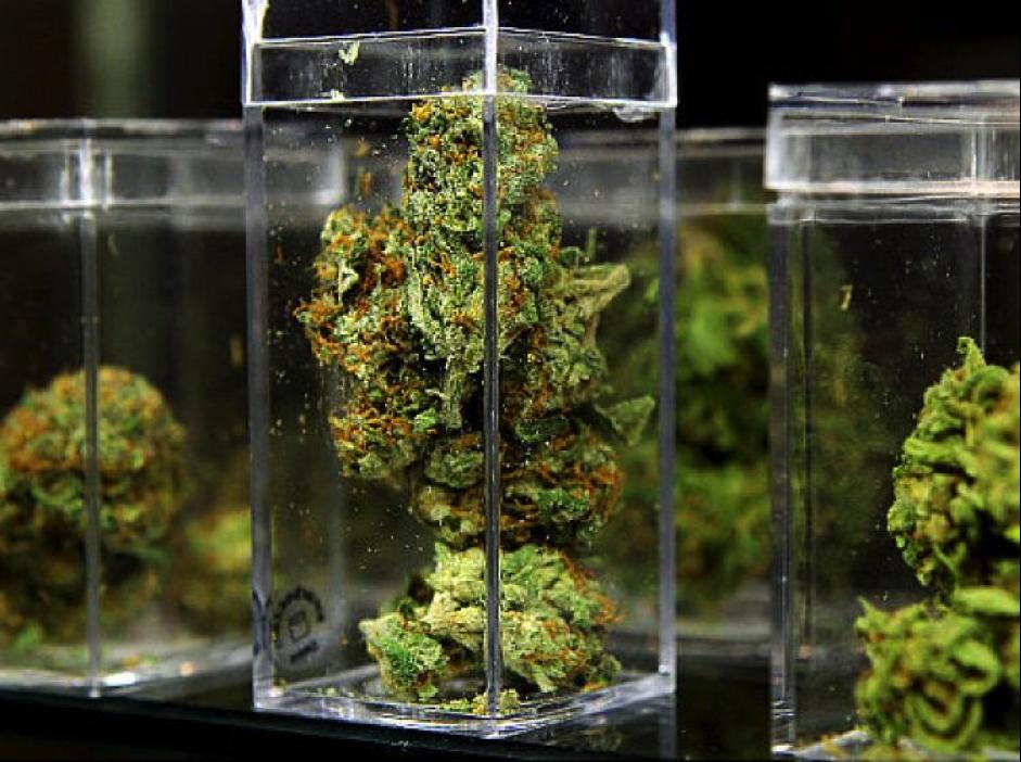 Oakland Marijuana Laws