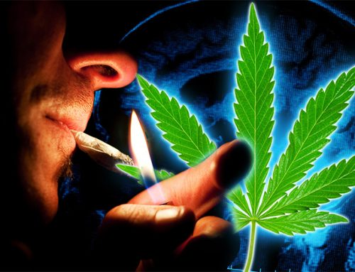Cannabis and Schizophrenia- Does Cannabis Cause Schizophrenia?
