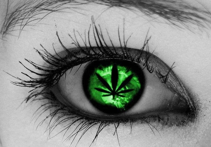 Cannabis and Glaucoma Is It an Effective Treatment