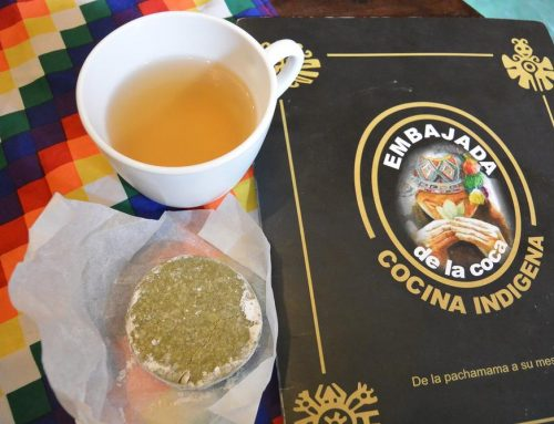 Coca Leaves, Much Maligned but What's the Truth?