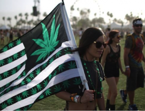 Legalize Cannabis a Beginners Guide to Activism