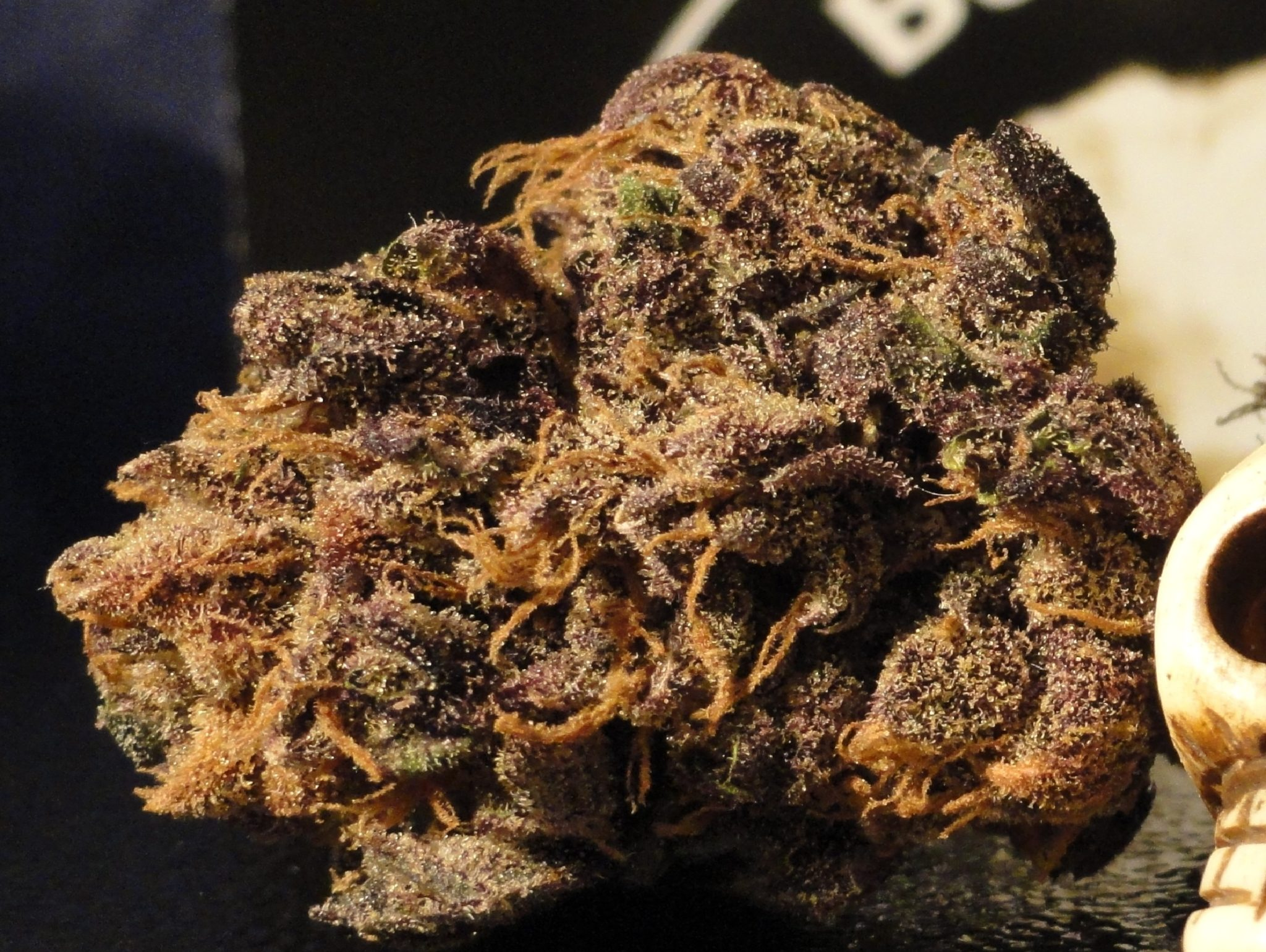 Best Halloween Weed Strains Zombie Kush