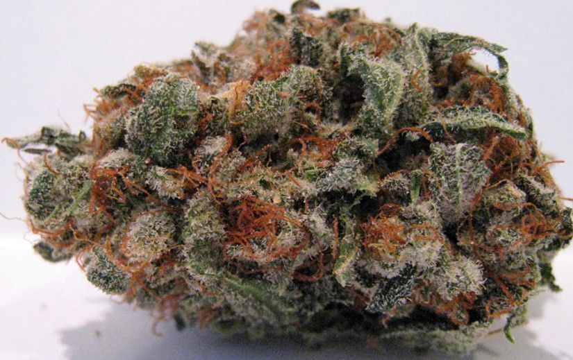 Best Tasting Marijuana Strains Fruity Pebbles
