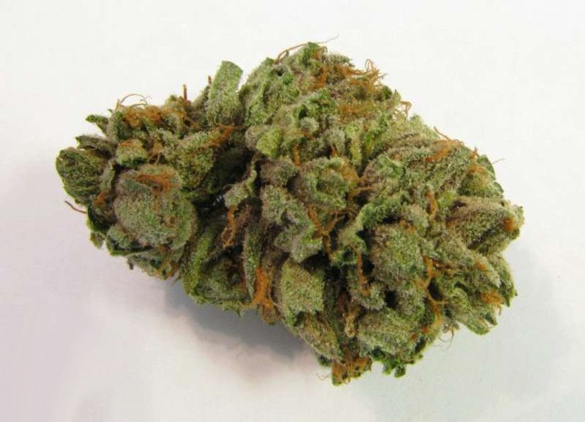 Best Tasting Marijuana Strains MK Ultra