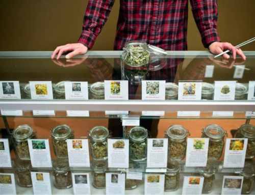 Bagged a Budtender Interview? Be Ready to Answer These Questions