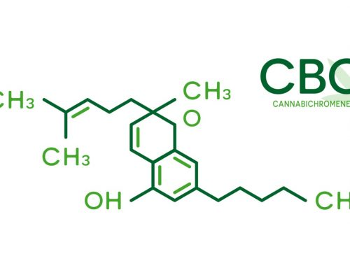What in the World is CBC? – Meet Another Formidable Cannabinoid