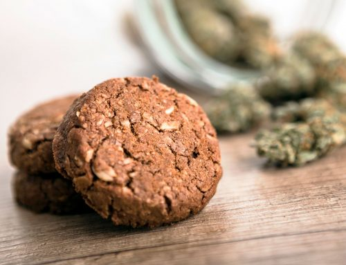 6 Of The Most Popular CBD Edibles And How They Rose To Stardom